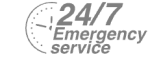 24/7 Emergency Service Pest Control in Cheshunt, Waltham Cross, EN8. Call Now! 020 8166 9746