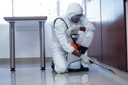 Emergency Pest Control, Pest Control in Cheshunt, Waltham Cross, EN8. Call Now 020 8166 9746